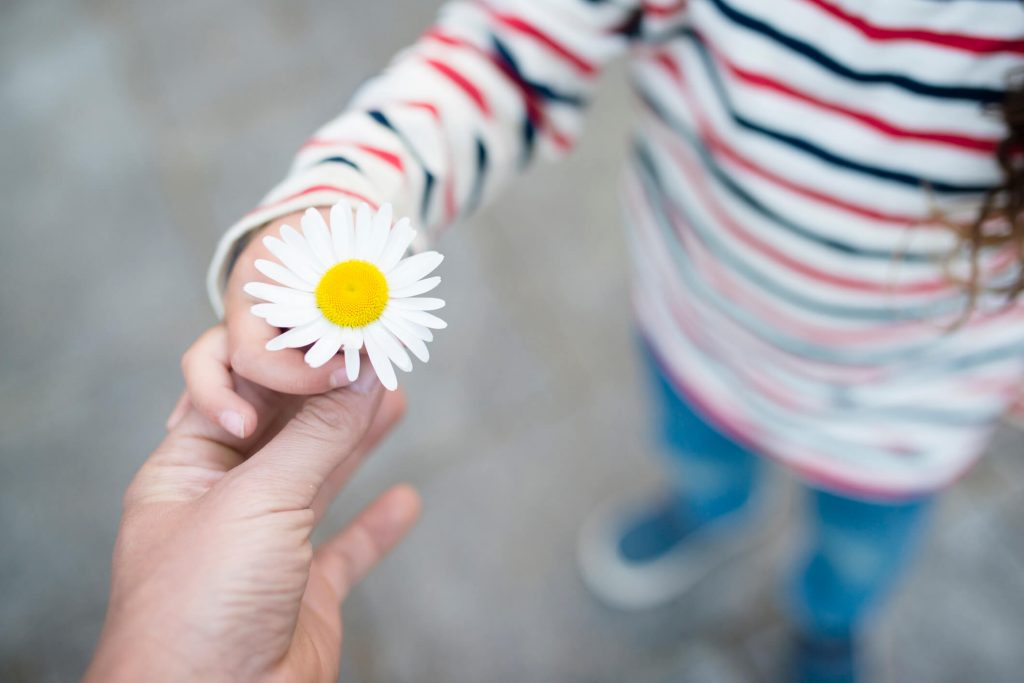 A little girl giving a daisy to someone